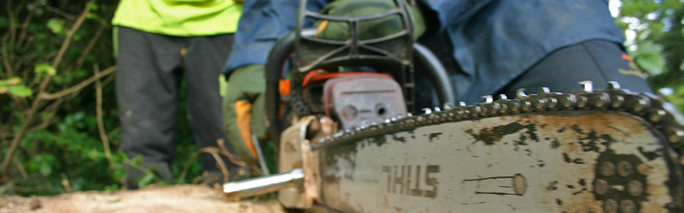 chainsaw training